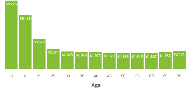 Average Car Insurance Price by Age